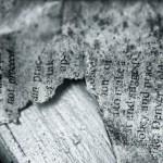I diari di Carroll: tra bugie, omissioni e sparizioni